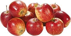 Thumbnail Apfel Red Prince lose